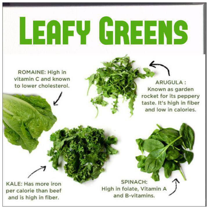 Gallery for gt identify leafy vegetables